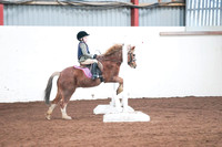 Unaffiliated Showjumping 28/02/16