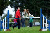 Oswestry Dog Agility 13th October 2013